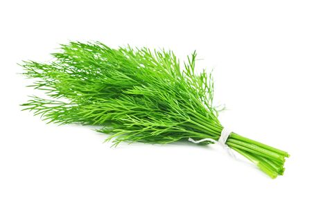 potherb: Dill isolated on white background Stock Photo