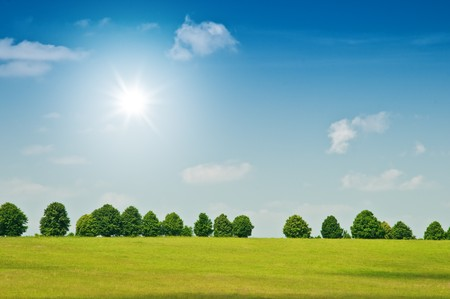 beautiful meadow and sunny sky Stock Photo - 7235116