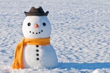 cute Schneemann auf schneebedecktes Feld Standard-Bild