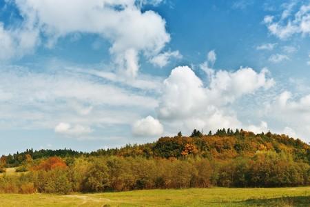 autumn forest under blue cloudy sky photo