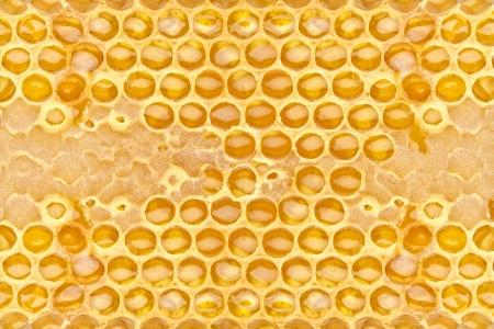 curative: fresh honeycom texture close up Stock Photo