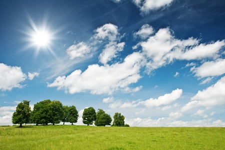 green spring meadow and sun Stock Photo - 8863610