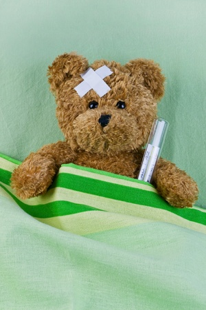 bear in bed with thermometer and plaster photo