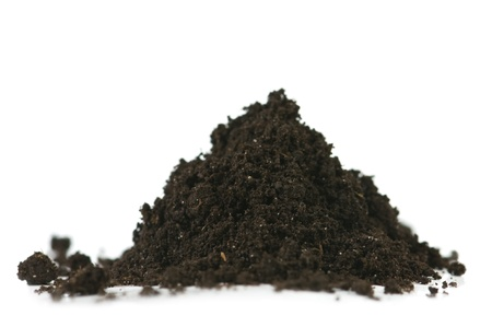 black soil: soil heap isolated on white