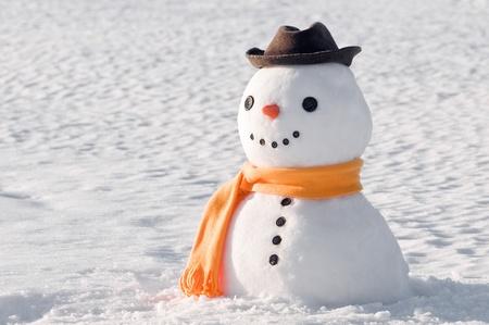 bonhomme de neige: bonhomme de neige mignon sur le terrain enneigé