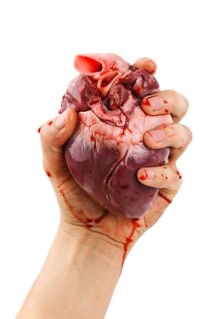 corazon humano: coraz�n en la mano aislados en blanco Foto de archivo