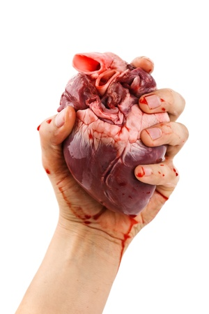 cut and blood: heart in hand isolated on white Stock Photo