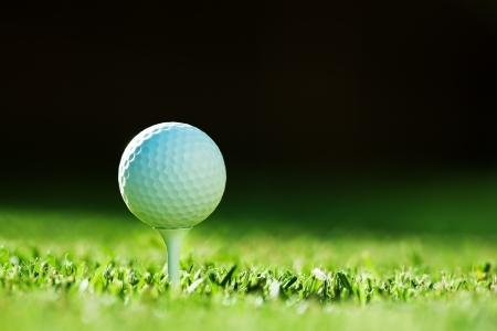 緑の芝生にゴルフ ・ ボール