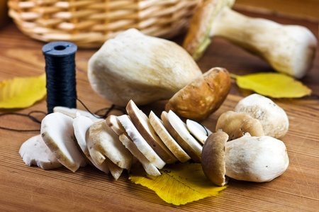 fungous: autumn mushroom on wood table