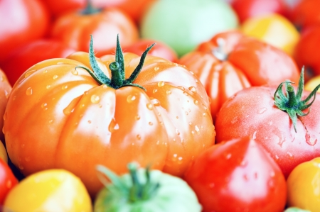 different sorts of tomato close up