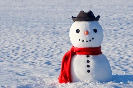 cute snowman on snowy field photo