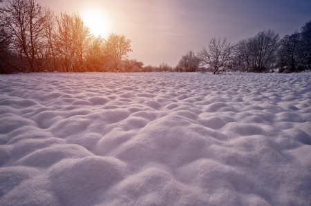 hillock: snowy hillock in morning field