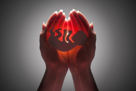 embryo silhouette in woman hand Stock Photo