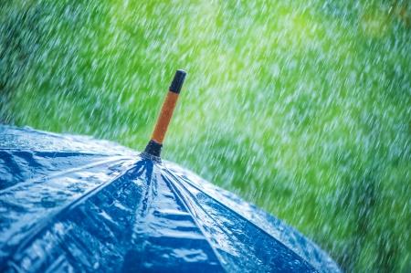 lluvia paraguas: paraguas y las gotas de lluvia de cerca Foto de archivo