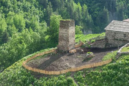 svan: old village on caucasus mountain