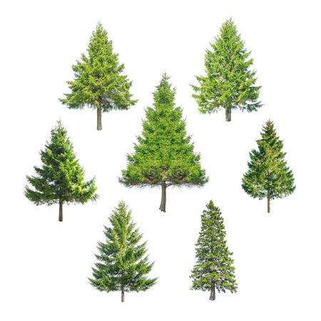 Kerst boom geïsoleerd op wit