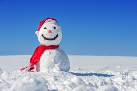 青い空を背景に雪だるま 写真素材