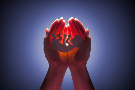 女性の手で胚のシルエット