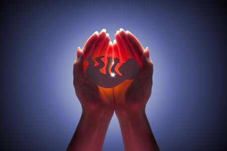 embryo silhouet in vrouwenhand Stockfoto