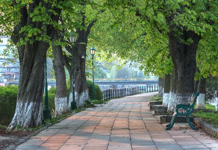 city alley: linden alley in Uzhhorod city