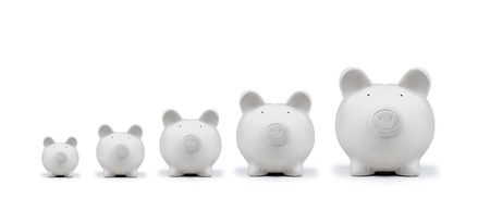 american pig money box isolated photo