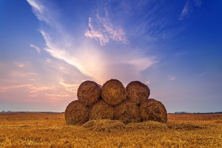 rural scene: Amazing rural scene on autumn field with straw roles and dramatic evening light. Stock Photo
