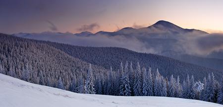 Fantastic orange evening landscape glowing by sunlight. Dramatic wintry scene with snowy trees. Gorgany ridge, Carpathians, Ukraine, Europe. Merry Christmas! Stock Photo