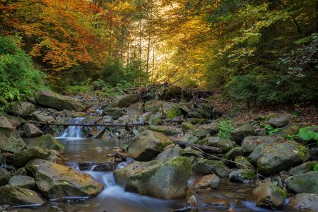 water flowing: Beauty waterfall in autumn forest Stock Photo