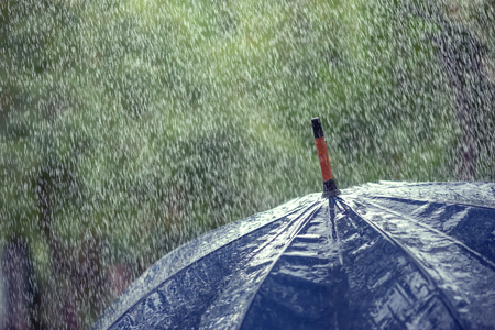 lluvia paraguas: paraguas y la lluvia cae el primer