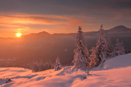 beautiful sunset: Fantastic orange evening landscape glowing by sunlight. Dramatic wintry scene with snowy trees. Kukul ridge, Carpathians, Ukraine, Europe. Merry Christmas! Stock Photo