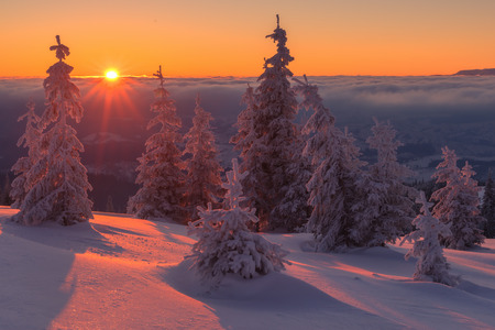 Fantastic orange evening landscape glowing by sunlight. Dramatic wintry scene with snowy trees. Kukul ridge, Carpathians, Ukraine, Europe. Merry Christmas! Stockfoto