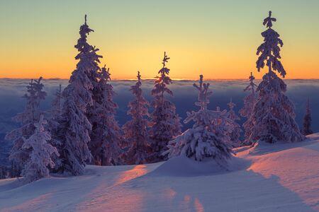 christmas morning: Fantastic orange evening landscape glowing by sunlight. Dramatic wintry scene with snowy trees. Kukul ridge, Carpathians, Ukraine, Europe. Merry Christmas! Stock Photo