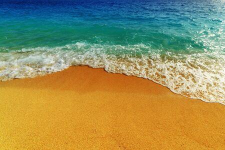 paysage magnifique méditerranéen close up