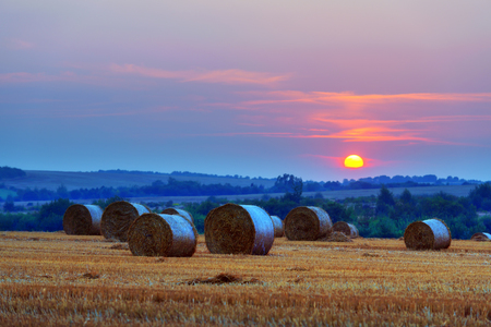 roles: Amazing rural scene on autumn field with straw roles and dramatic evening light. Stock Photo