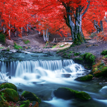 rocks: Beauty waterfall in autumn forest Stock Photo