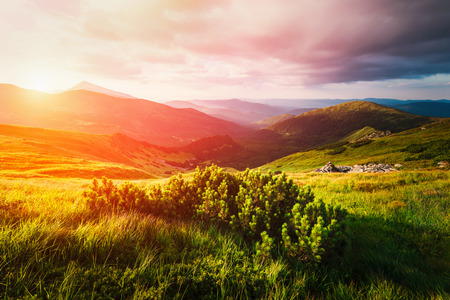 Mountain valley during sunset. Amazing nature scene glowing by sunlight. Located place: Carpathians, Ukraine, Europe Stock Photo