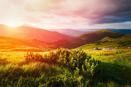 Valle de la montaña durante la puesta del sol. Escena increíble de la naturaleza que brilla intensamente por la luz del sol. Situado en: Cárpatos, Ucrania, Europa
