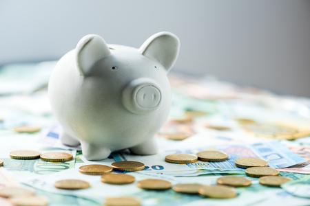 Schwein-Geld-Box mit Bargeld Großansicht