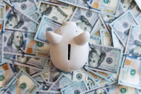 Schwein Geld Feld und Bargeld