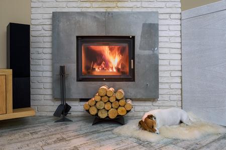 Jack russel terrier die op een witte deken dichtbij de brandende open haard slapen. Rustende hond. Hygge concept Stockfoto
