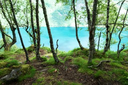 View on blue water fjord Lizenzfreie Bilder