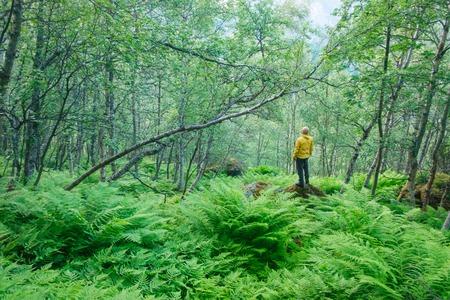 Alone tourist in lush norvegian forest