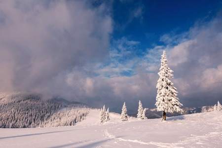 Fantastic winter landscape Standard-Bild
