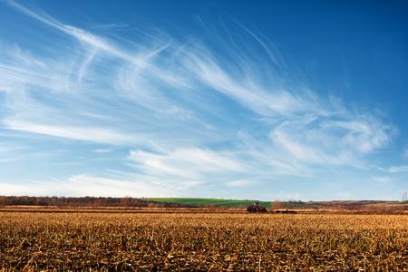 Amazing rural scene on autumn corn field Standard-Bild