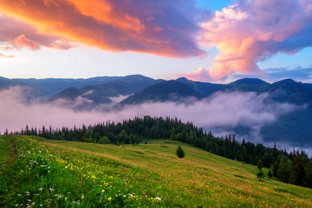 Picturesque summer landscape with colorful sunrise on Carpathian mountains, Ukraine, Europe