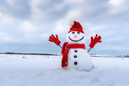 Funny snowman in stylish hat and red scalf on snowy field. Merry Christmass and happy New Year!