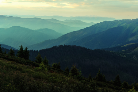 Picturesque summer landscape with colorful sunrise on Carpathian mountains. Mountain ranges in morning light. Travel background concept