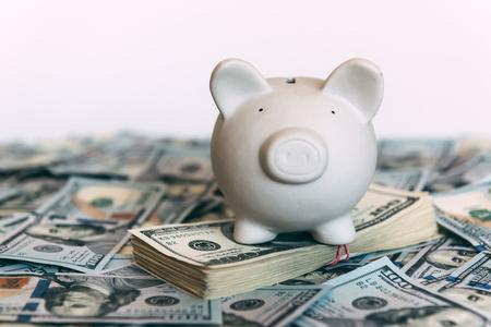 Piggy moneybox with dollar cash closeup. Financial concept