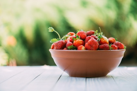 Natural organic strawberry from an own garden in ceramic bowl. Summer day at rural farm. Agriculture concept Standard-Bild