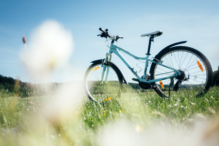 Blue female bike on blooming yellow meadow. Sunny day